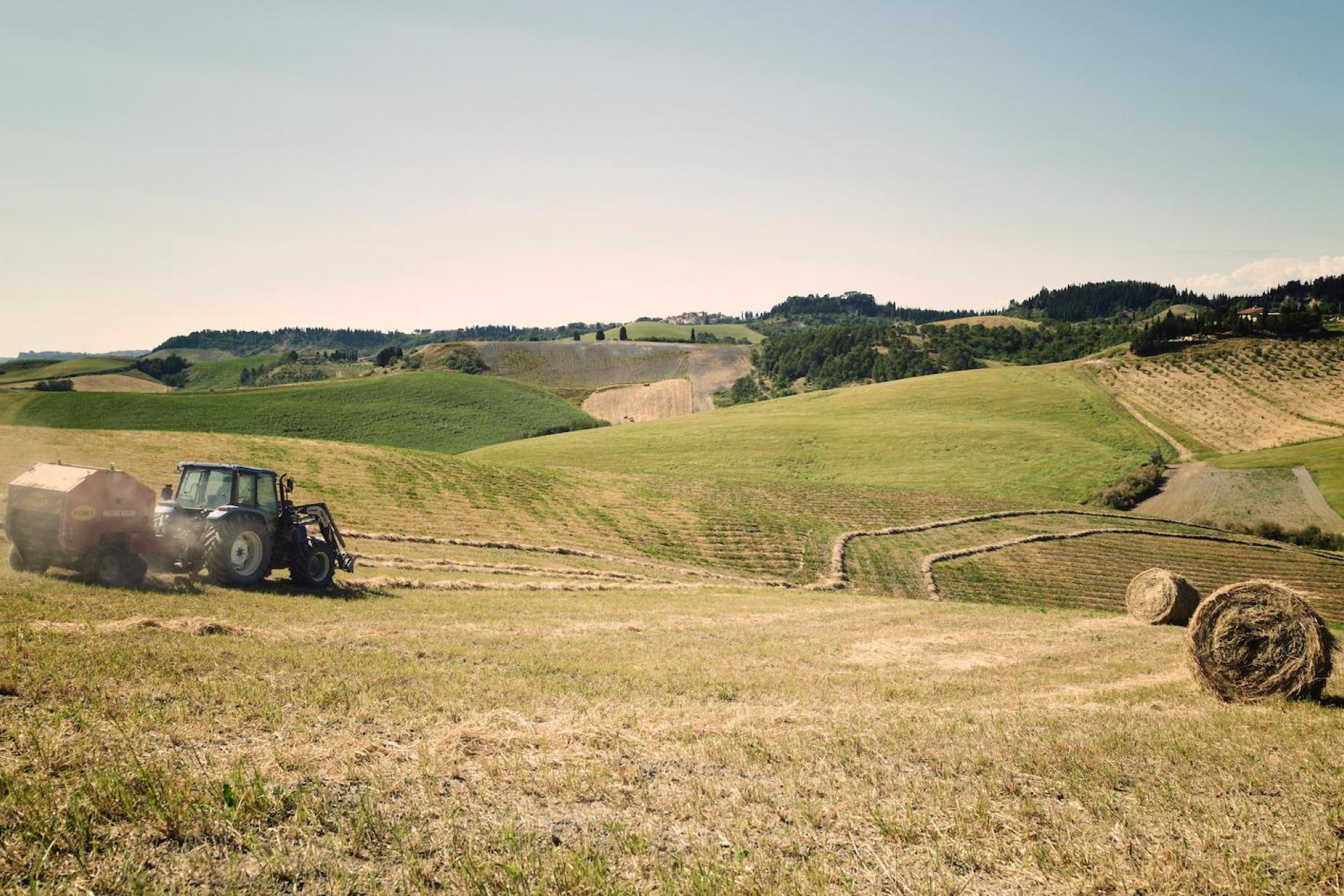 Agriturismo Toskana Agriturismo Toskana mit grandiosem Blick