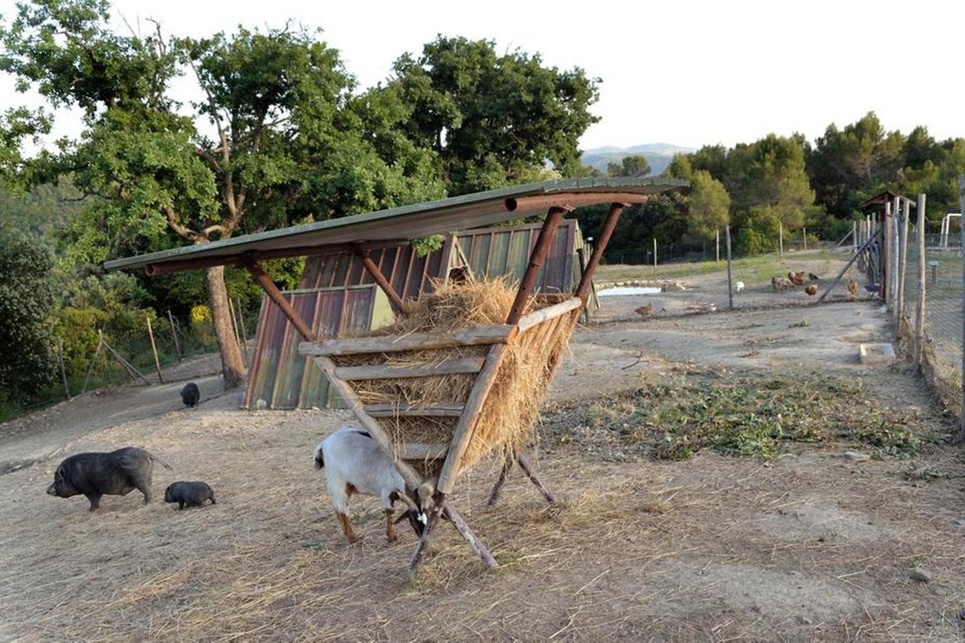 Agriturismo Umbrien Agriturismo Umbrien, auf dem Land und ruhig gelegen